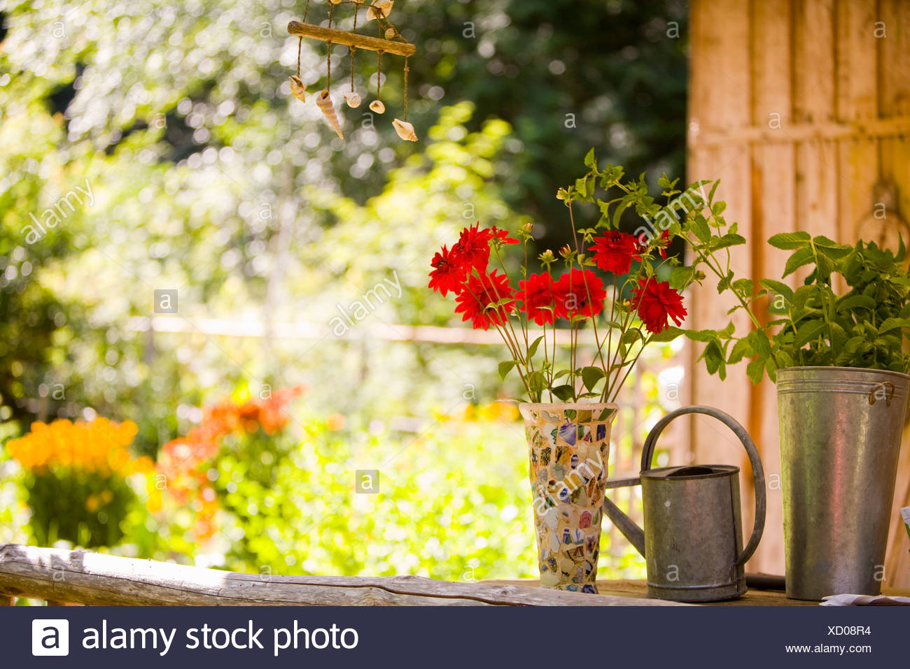 Watering can with a vase of flowers and a potted plant Stock Photo