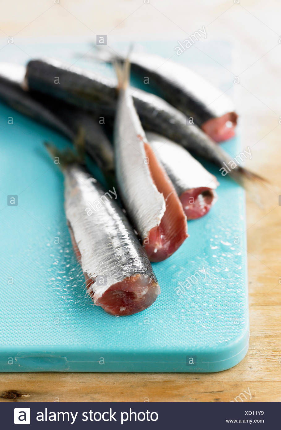 Raw gutted sardines - Stock Image
