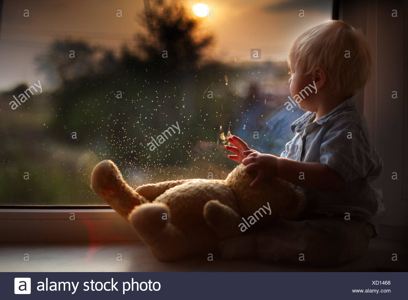 Boy and teddy bear watching sunset - Stock Image