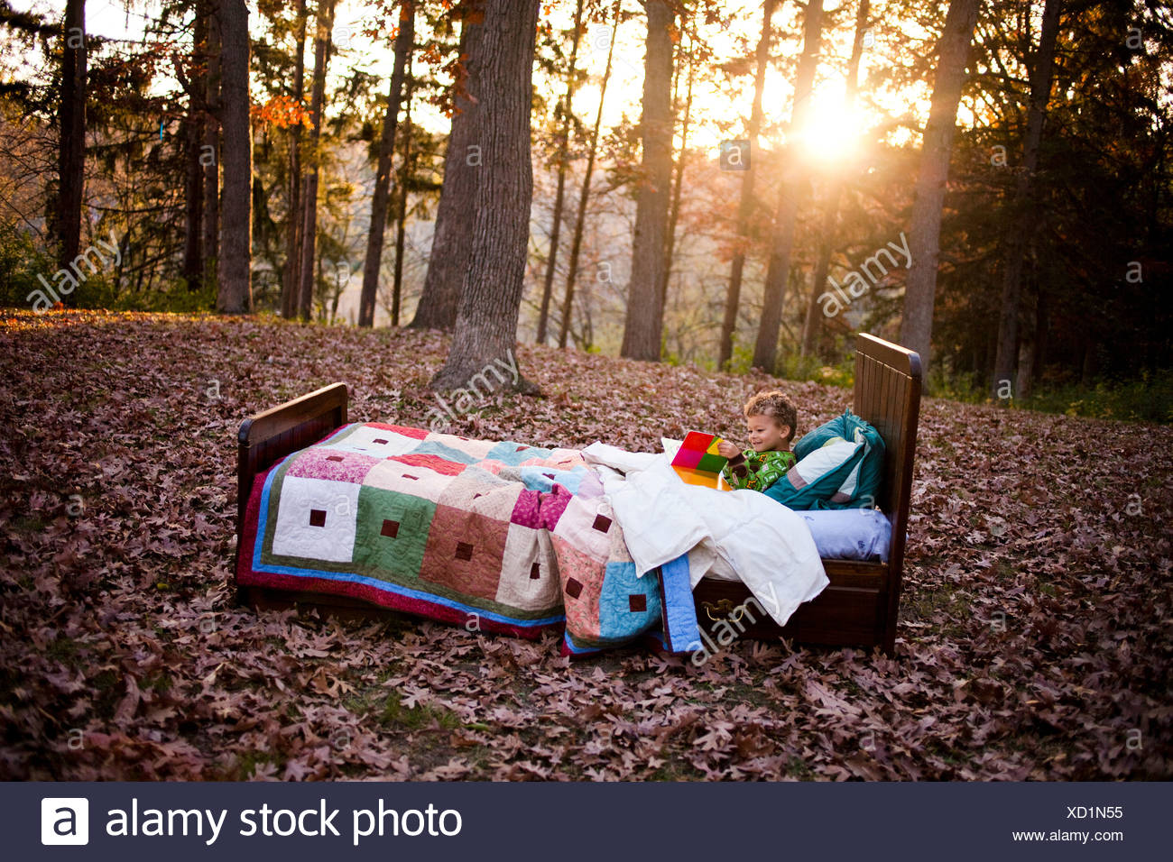 Young boy in bed in forest Stock Photo