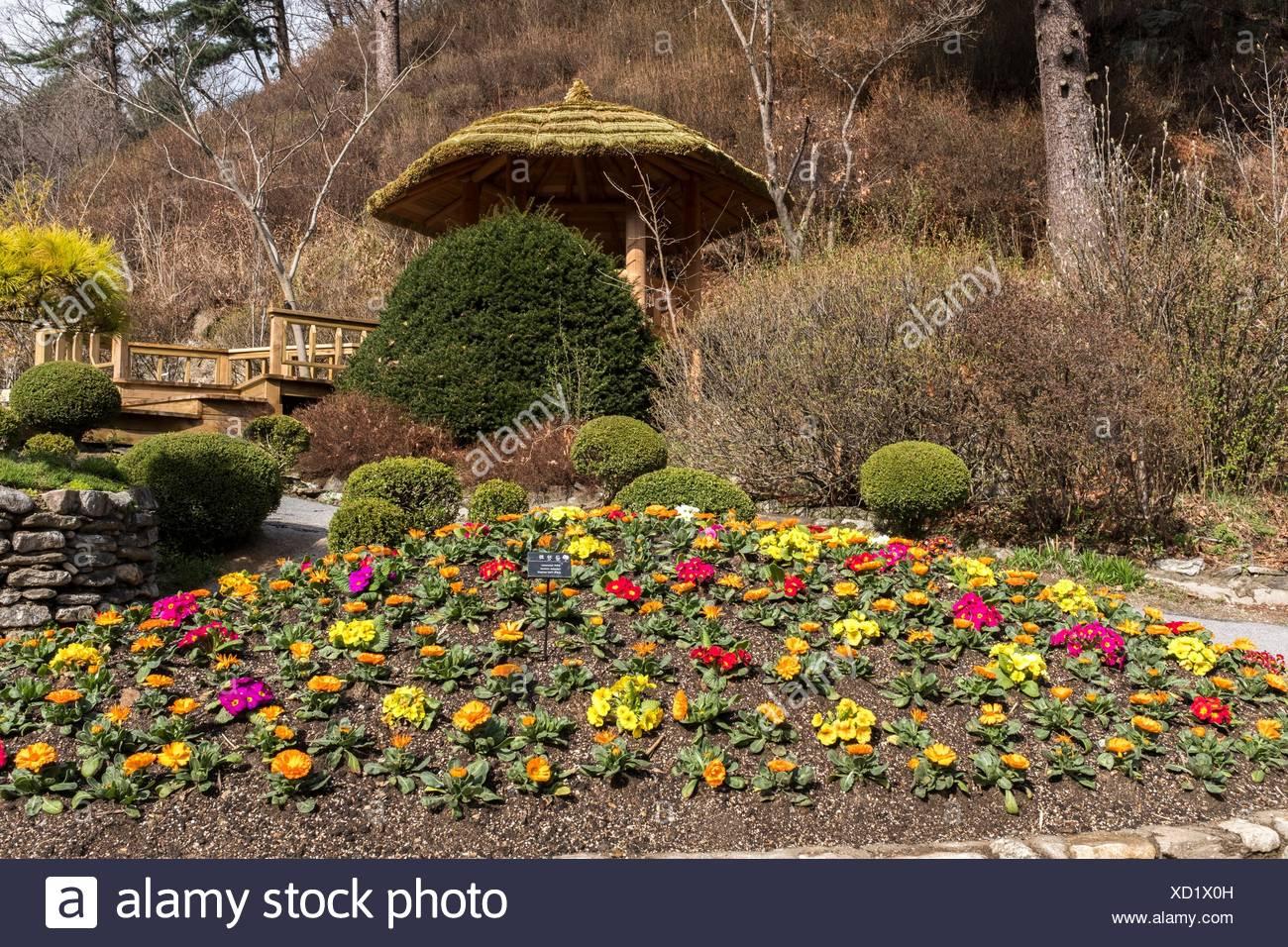 South Korea Garden Stock Photos & South Korea Garden Stock Images ...