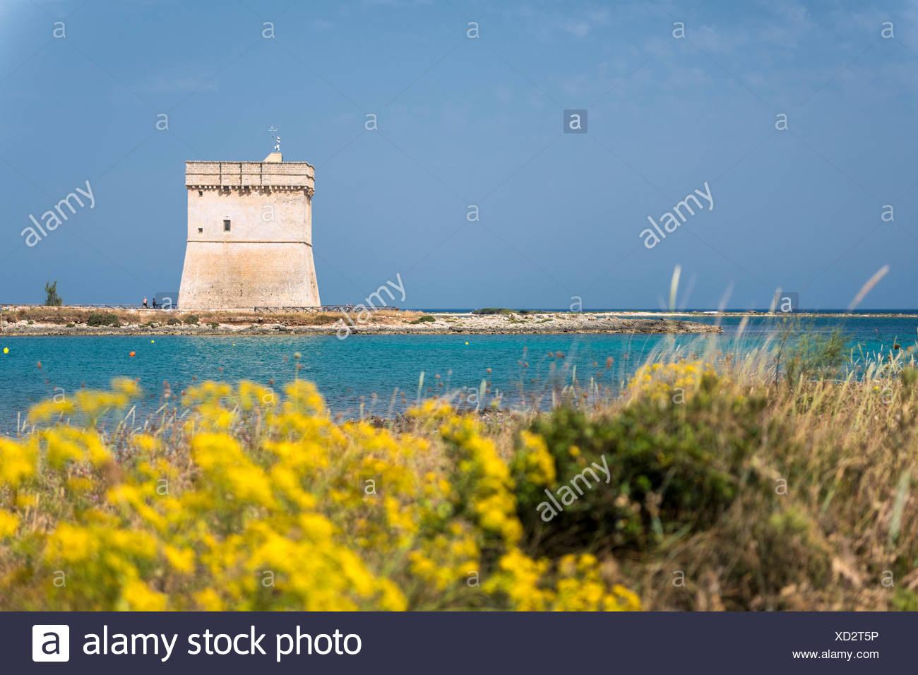 Porto Cesareo, province of Lecce, Salento, Apulia, Italy. The Chianca Tower Stock Photo