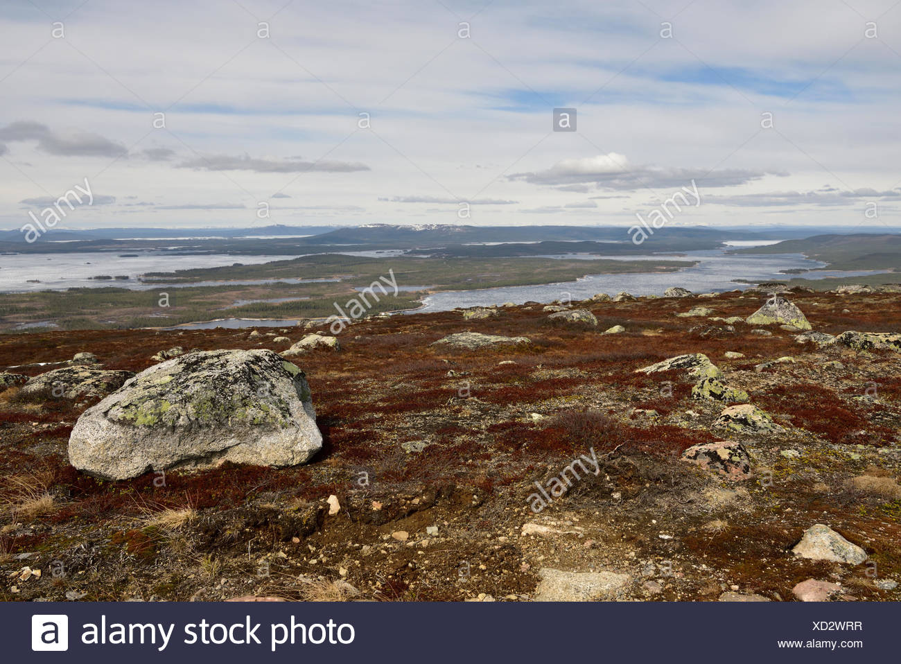 View, Uljabuouda, mountain, bolders, forest, lakes, Uddjaure, frozen, ice, mountains, snow, Arjeplog kommun, Norrbotten county, Lapland, Sweden *** Lo - Stock Image