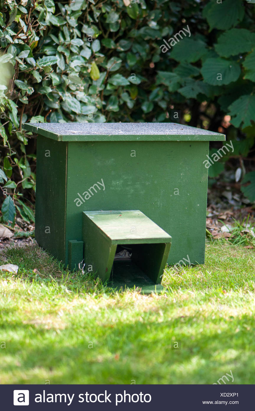 Hedgehog shelter in a garden - Stock Image