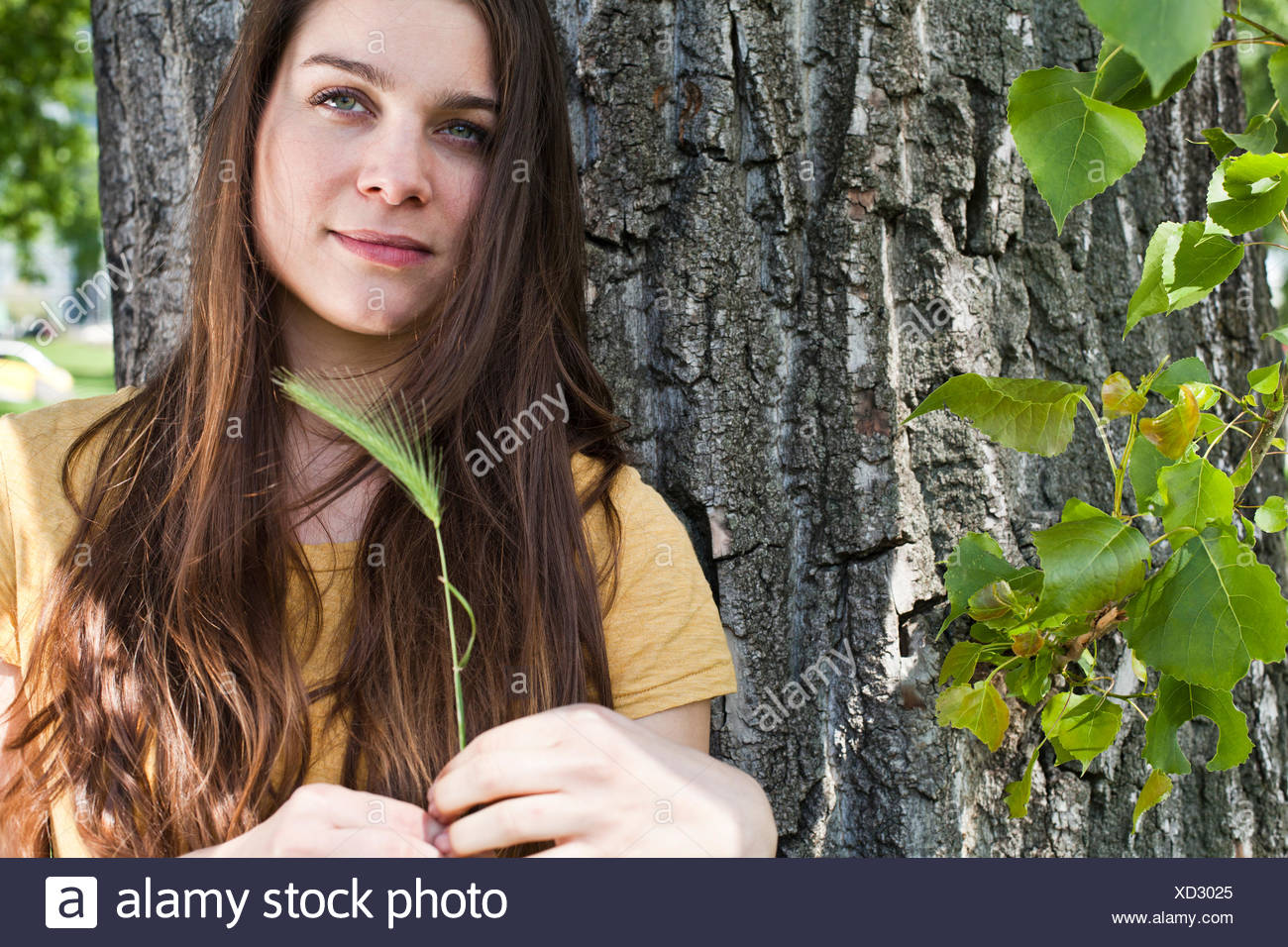 Portrait of young woman with spike in her hand sitting in front of tree trunk - Stock Image