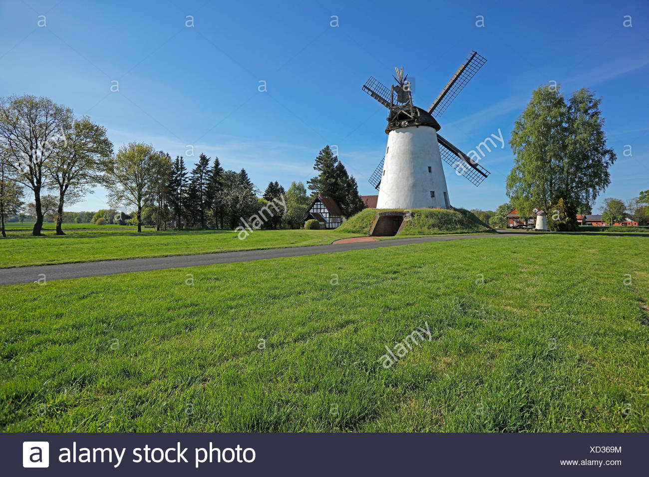 Embankment Dutchman windmill Wegholm with bakehouse and oven on Westfälischen Mühlenstraße (route), Germany, Wegholm - Stock Image