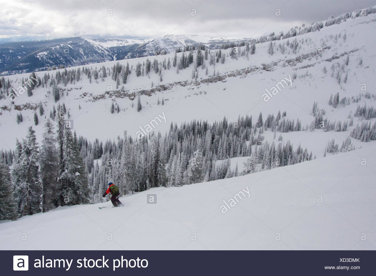 A teen boy downhill skiing near rime covered trees in the mountains on a cloudy day. - Stock Image