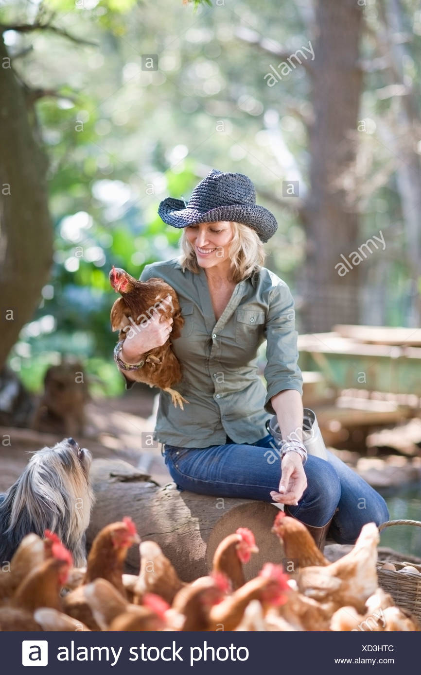 Woman feeding chickens on farm - Stock Image