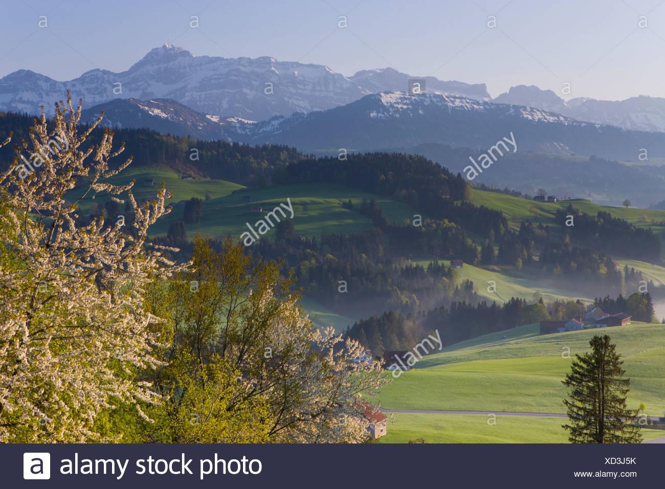 Switzerland Canton Appenzell Ausserrhoden Stock Photos Switzerland