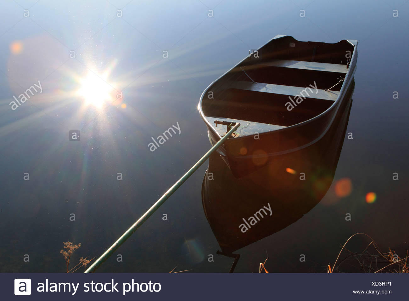 rowing boat on quiet water fixed at the shore with a bar, Germany - Stock Image
