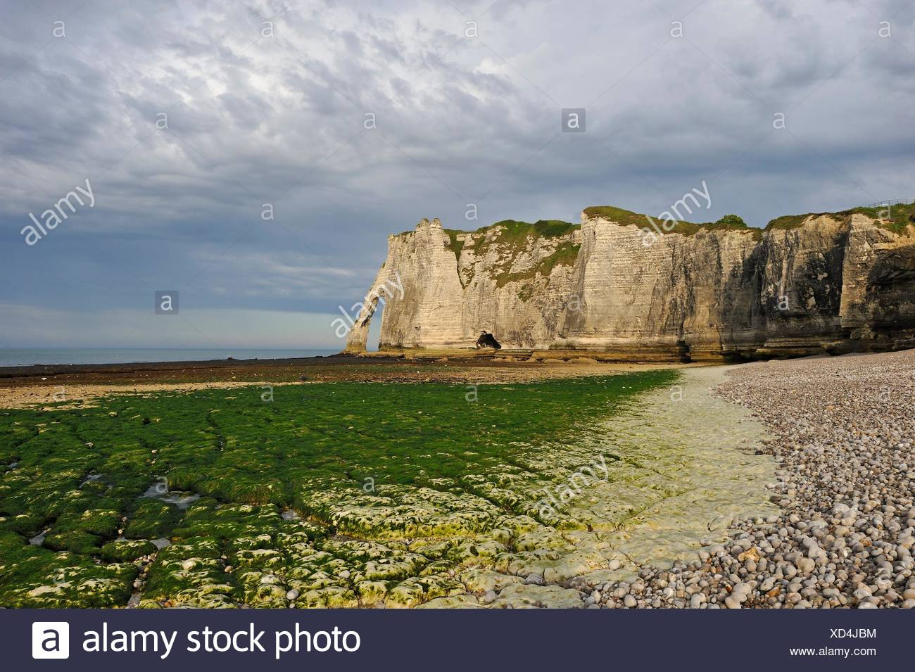 foreshore at low tide and cliff, Etretat, Seine-Maritime department, Normandie region, France, Europe. - Stock Image