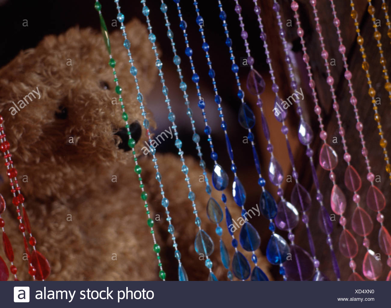 Close-up of a beaded curtain and a teddy bear - Stock Image