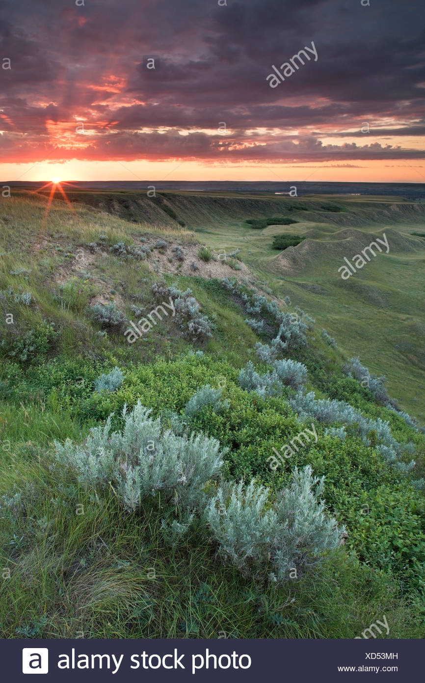 Sunrise at Checkerboard Hill near Leader, Saskatchewan, Canada - Stock Image