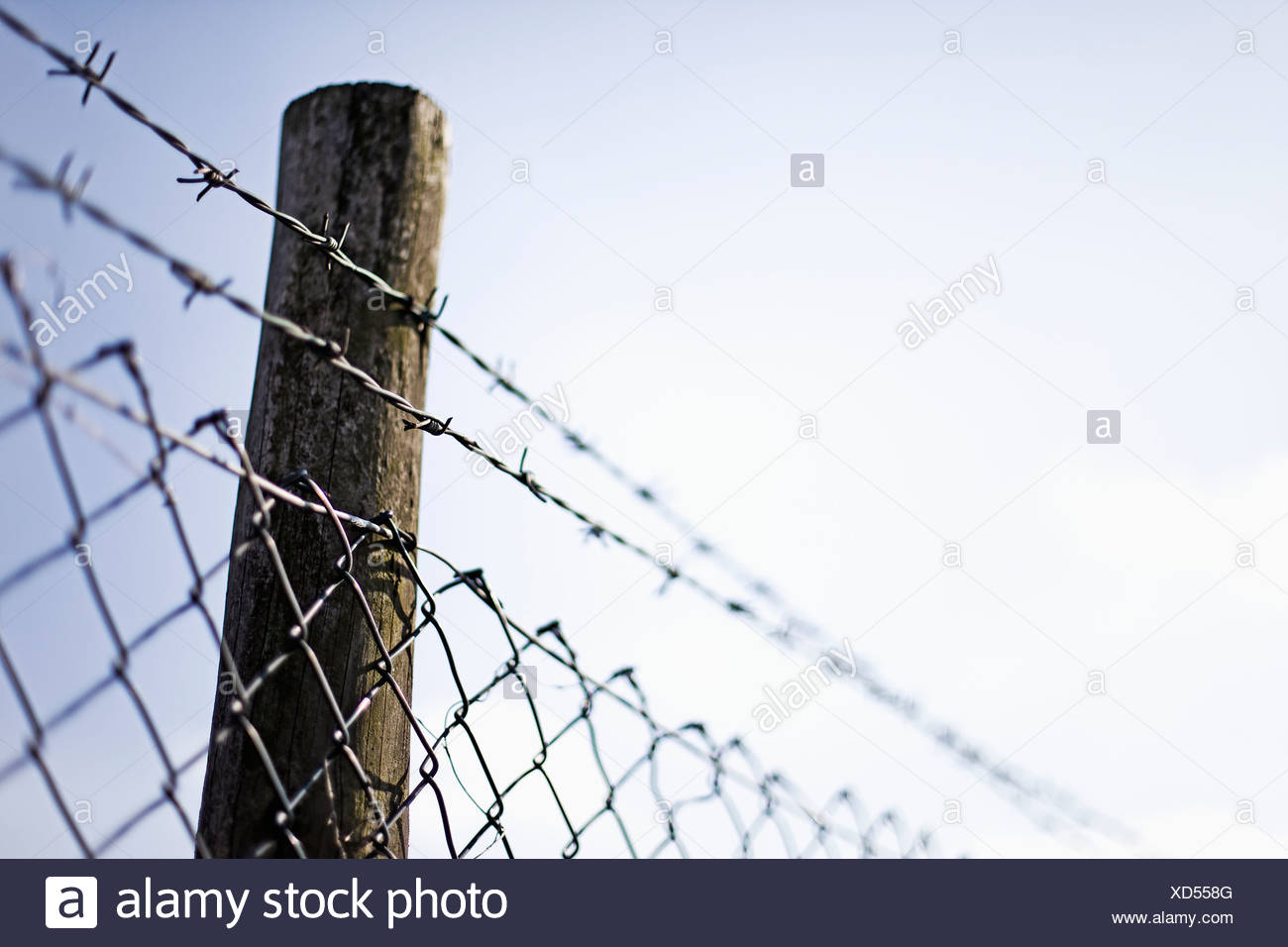 Mesh Wire Fence Stock Photos & Mesh Wire Fence Stock Images - Alamy