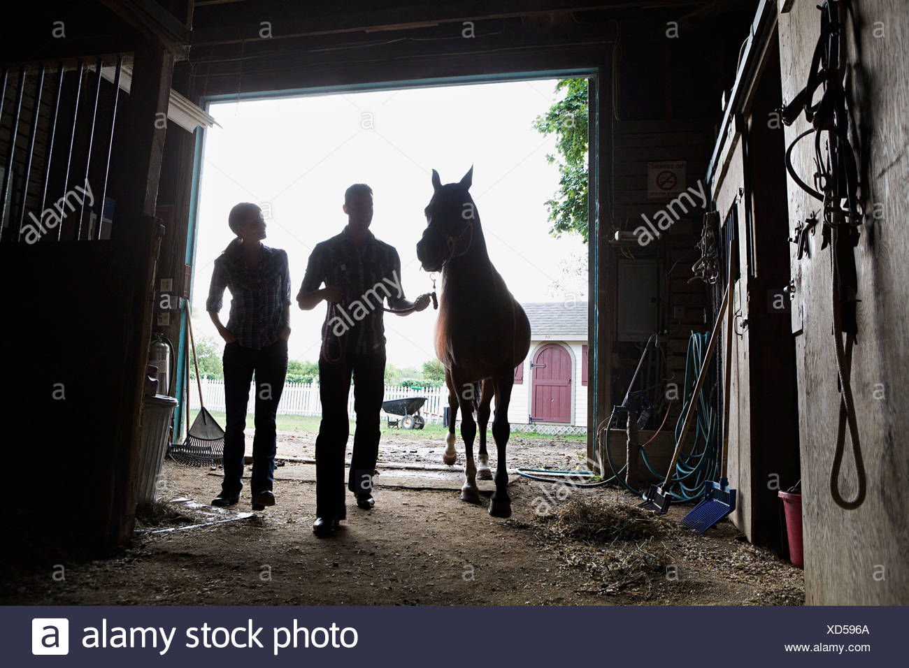 Two people with horse in stable - Stock Image