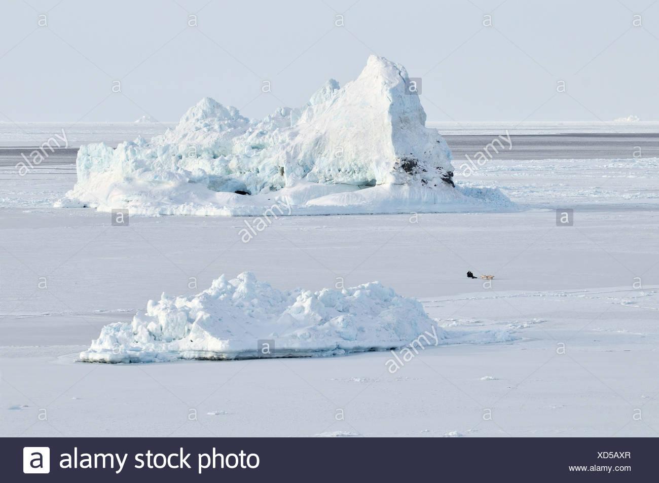 Frozen fjord, dog sled, Qeqertarsuaq or Disko Island, Greenland, Arctic North America - Stock Image