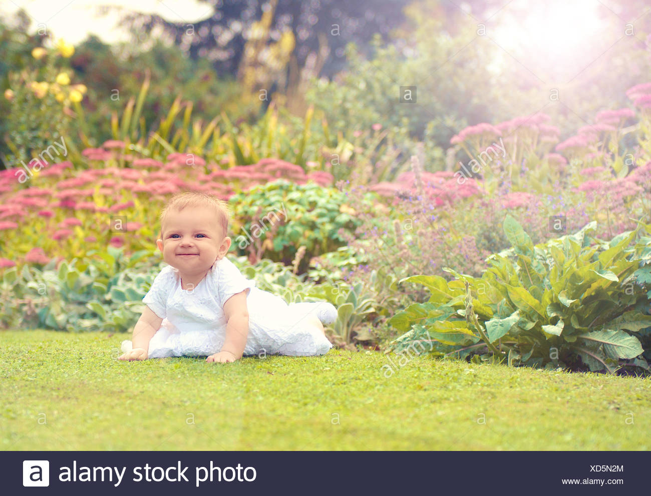 Baby girl (6-11 months) starting to crawl in park - Stock Image