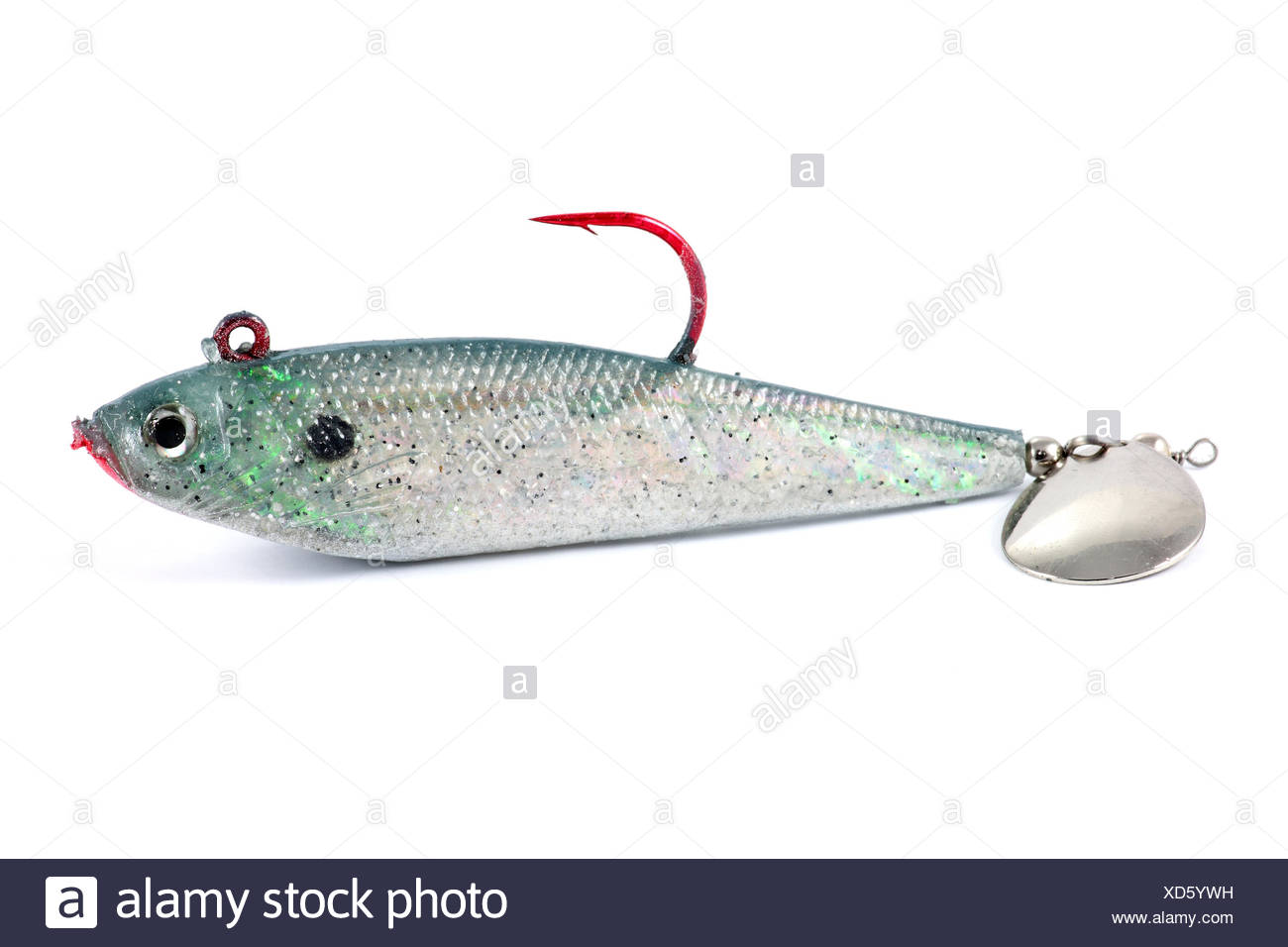 isolated, fish, silver, outdoor, adventure, fishing, predator, trout, bait, - Stock Image