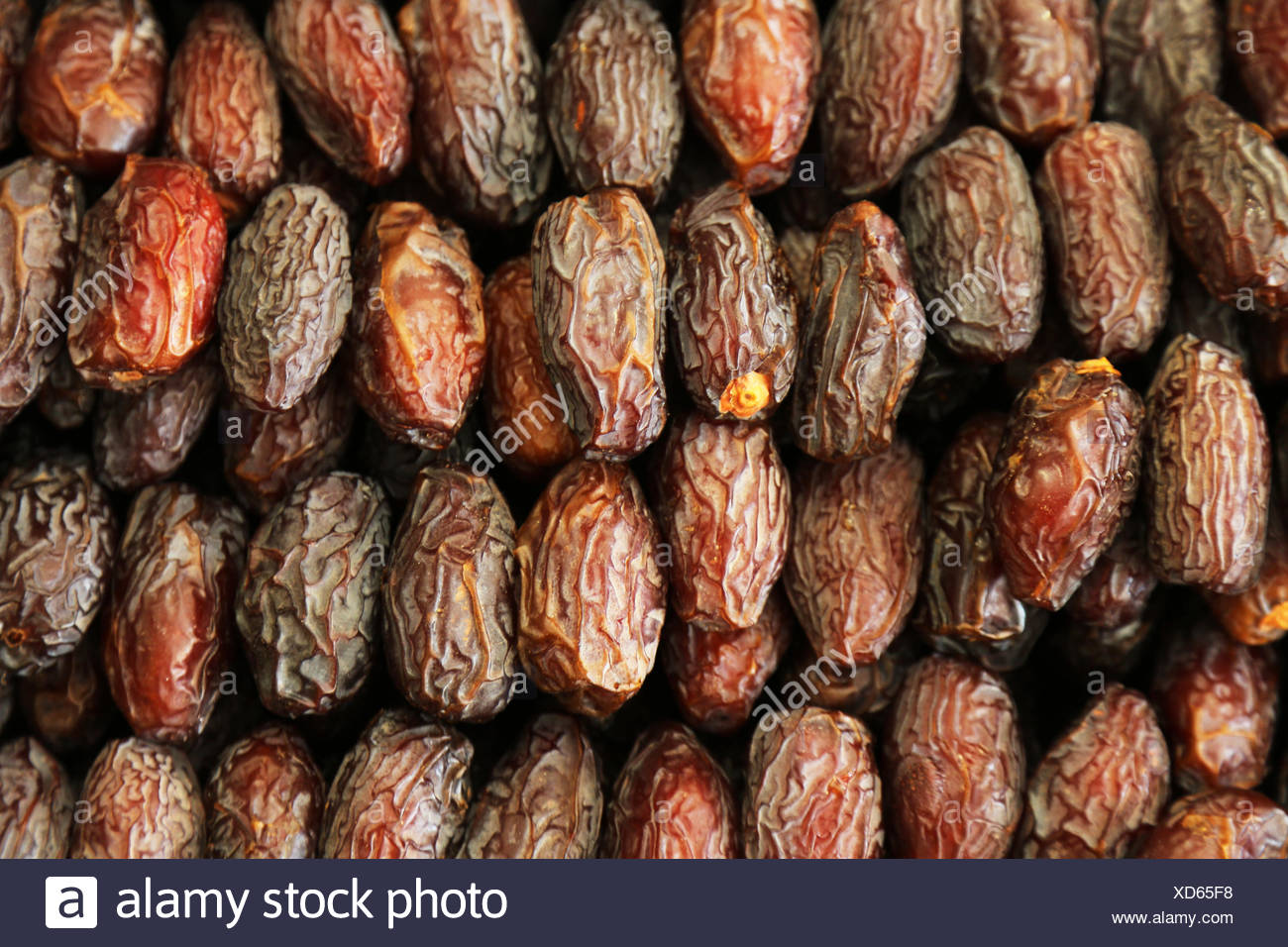 palm fruit - Stock Image