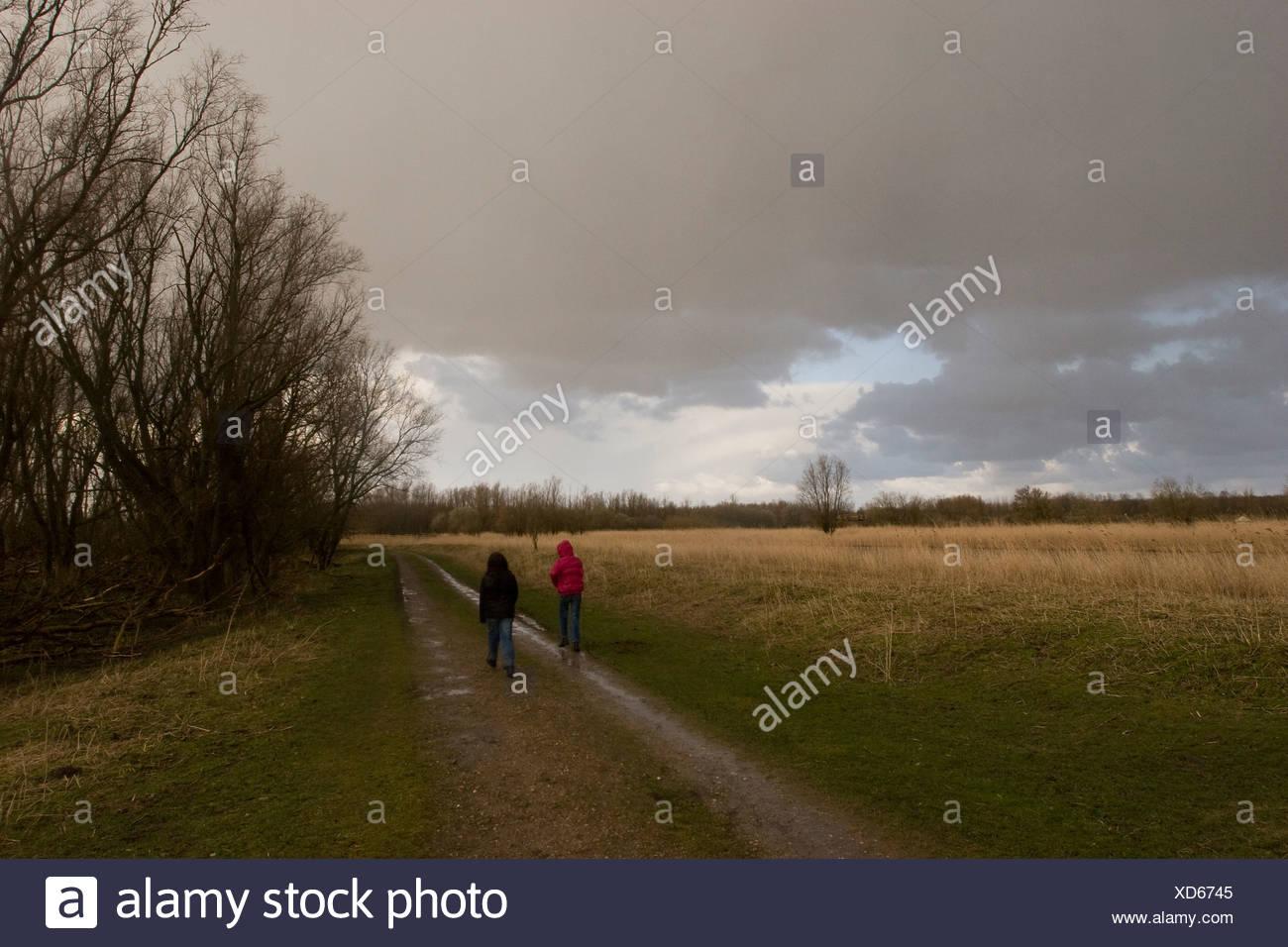 Wandelen in Oostvaardersplassen met slecht weer Stock Photo