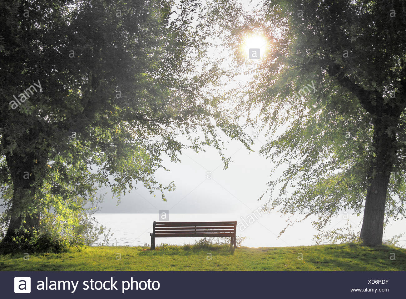 park bench at the lakefront in backlight, Italy, Lake Garda - Stock Image