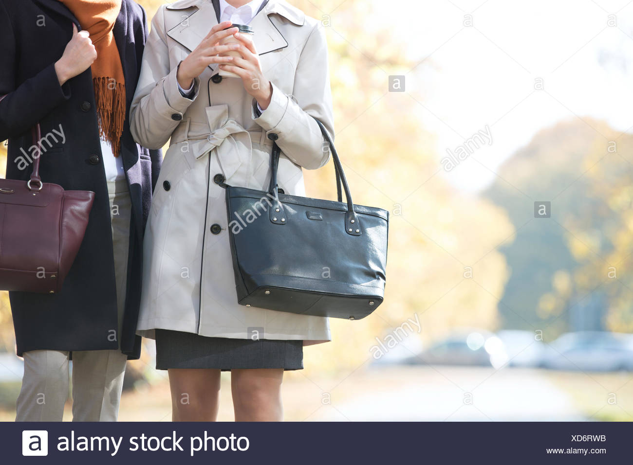 Midsection of businesswomen carrying purses at park - Stock Image