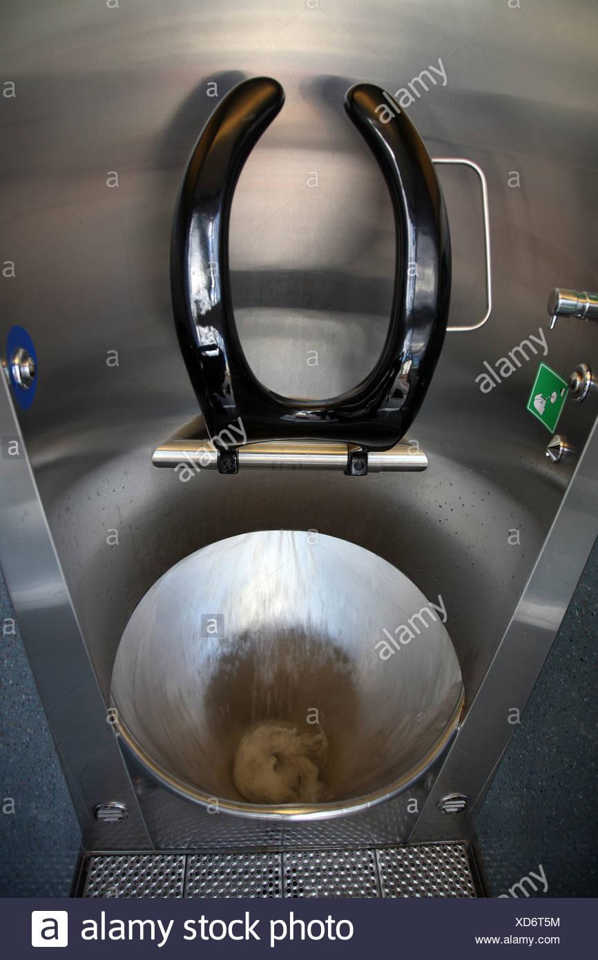 Modern public toilet, Zurich, Switzerland - Stock Image