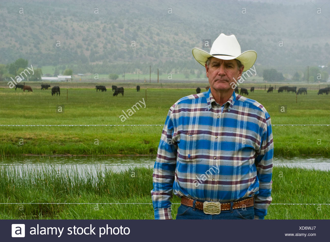 Livestock - A cattle rancher / beef producer poses near one of his pastures on a stormy day / Klamath Basin, California, USA. - Stock Image