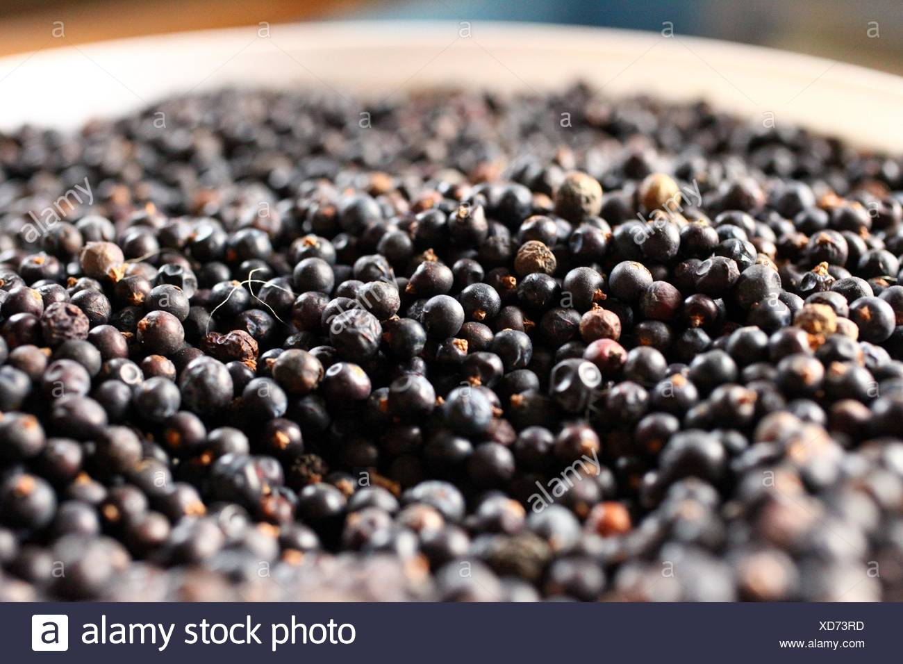 Juniper berries used in making of gin - Stock Image