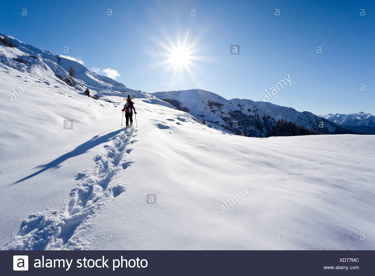 Snowshoer ascending to Jagelealm alpine pasture in Ridnaun Valley above Entholz, Alto Adige, Italy, Europe - Stock Image