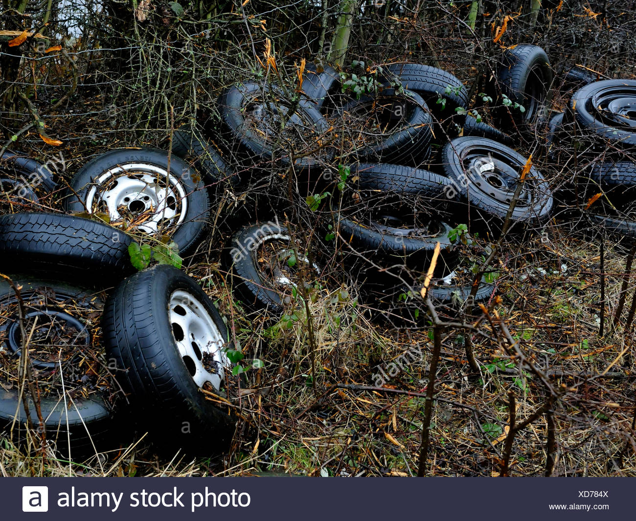 Car tyres illegally dumped in the countryside. - Stock Image