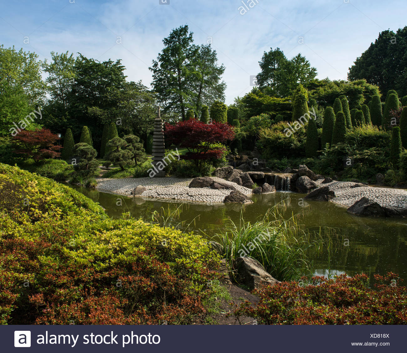 Japanese Garden in Bonn, North Rhine-Westphalia - Stock Image
