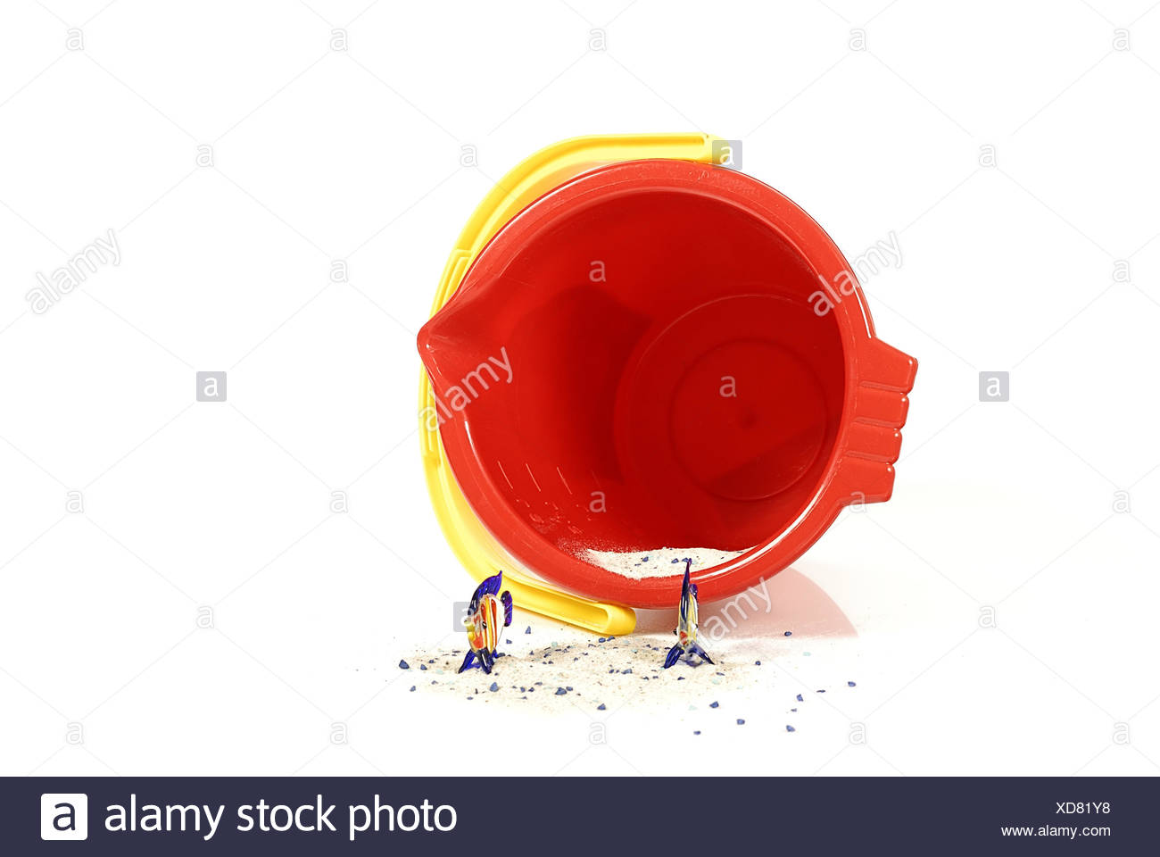 fische im eimer-fishes in a pail - Stock Image