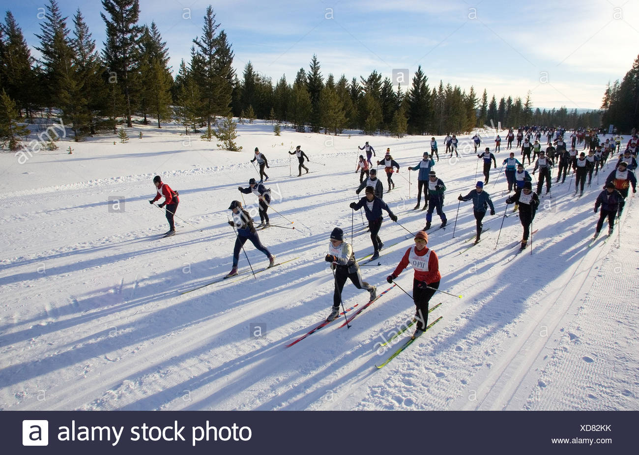Cross Country Skis Nordic Skis The House Com >> Cross Country Skiing Marathon In 100 Mile House South Cariboo