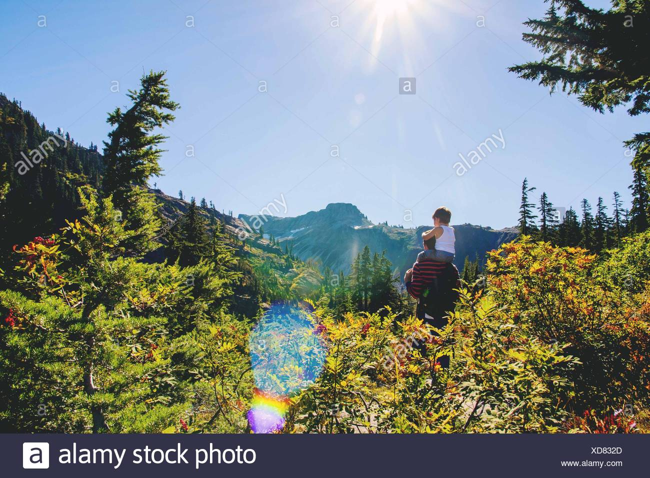 Young boy (2-3) sitting on father's shoulders looking at mountain - Stock Image