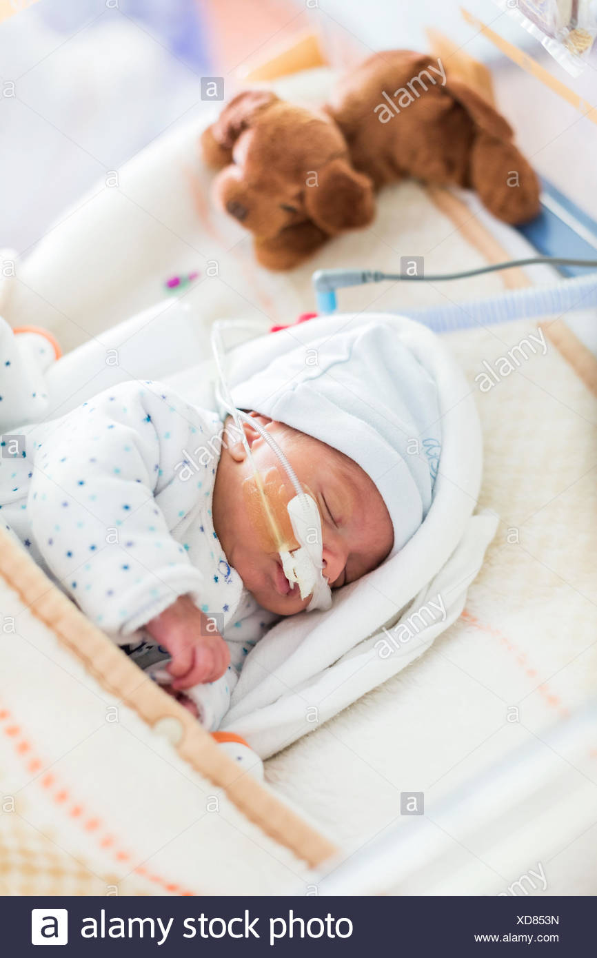Premature newborn baby placed under respiratory assistance, CHU Bordeaux. - Stock Image