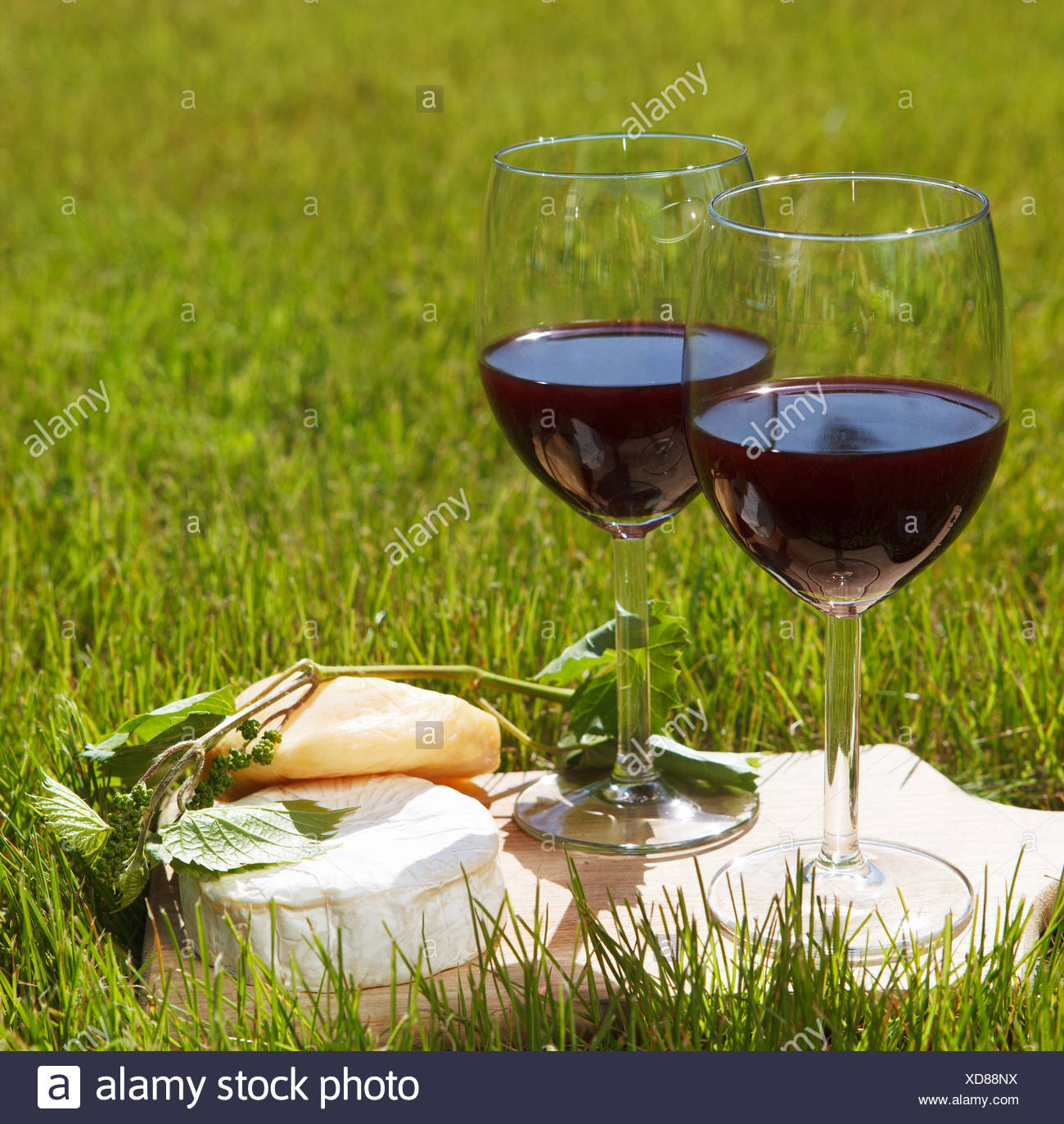 Various sorts of cheese and two glasses of the natural homemade red wine - Stock Image