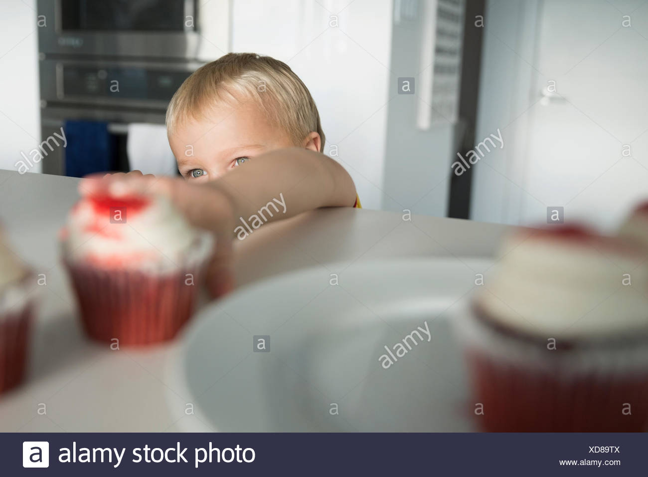 Boy reaching for cupcake on kitchen counter - Stock Image