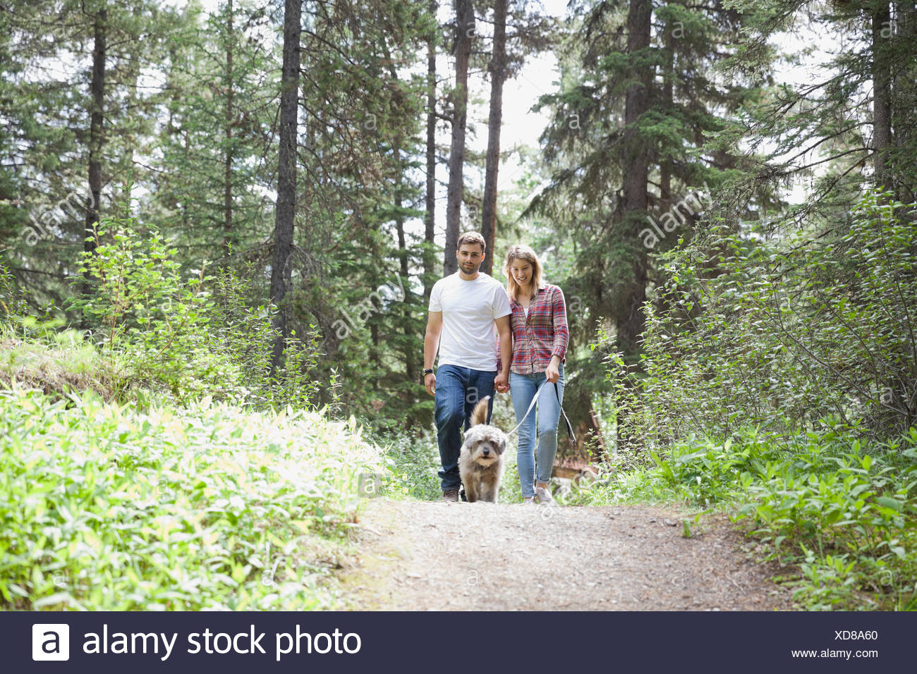 Happy couple taking dog for walk in forest - Stock Image