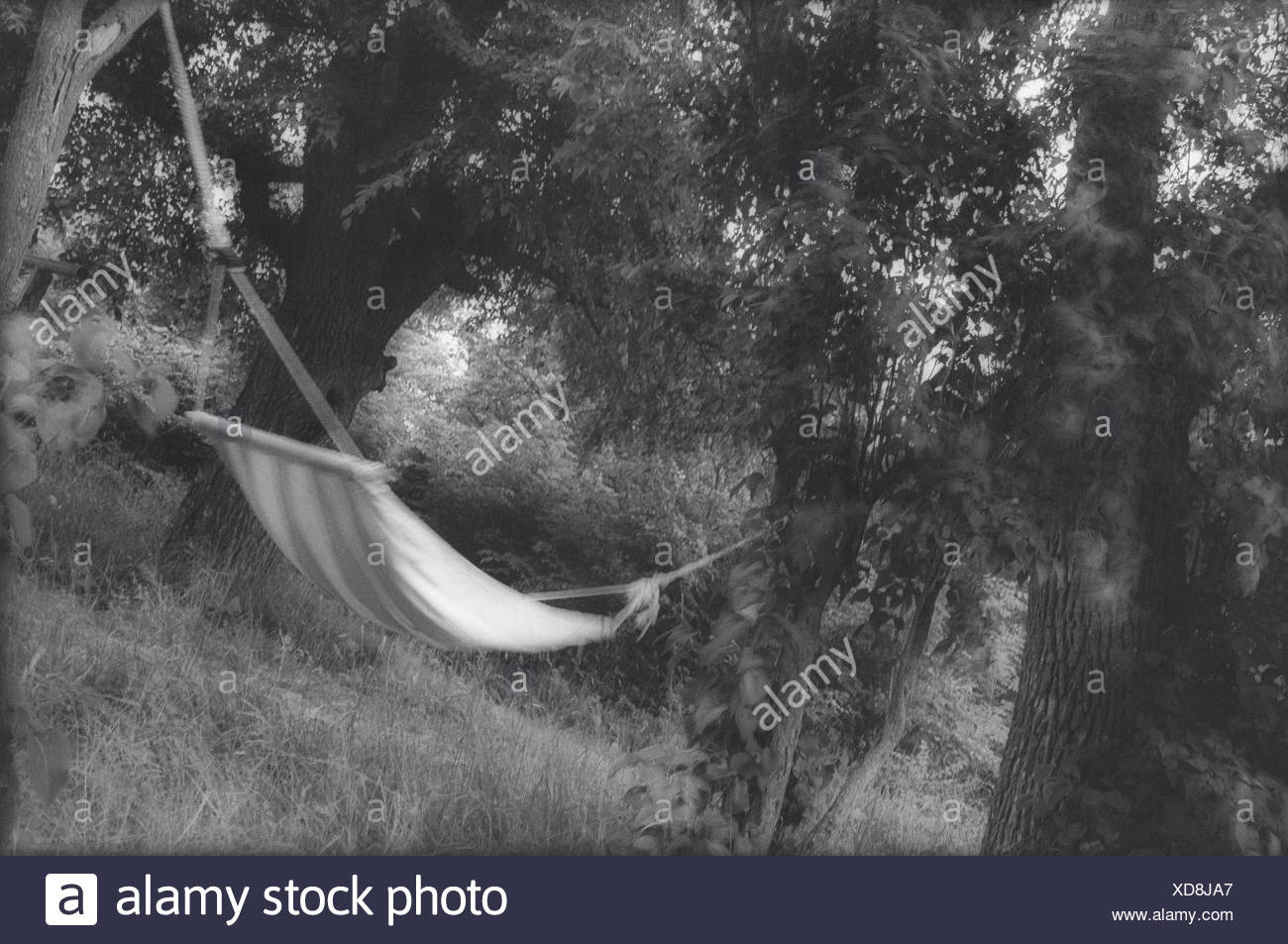 Blurred image of hammock in a garden. - Stock Image