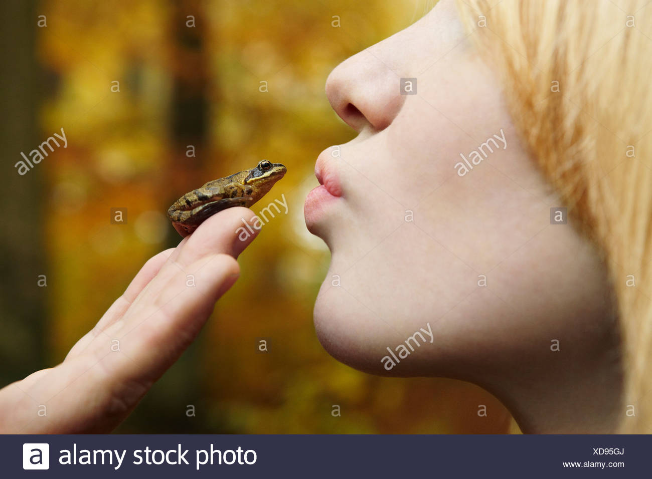 Girl kissing tiny frog in forest - Stock Image