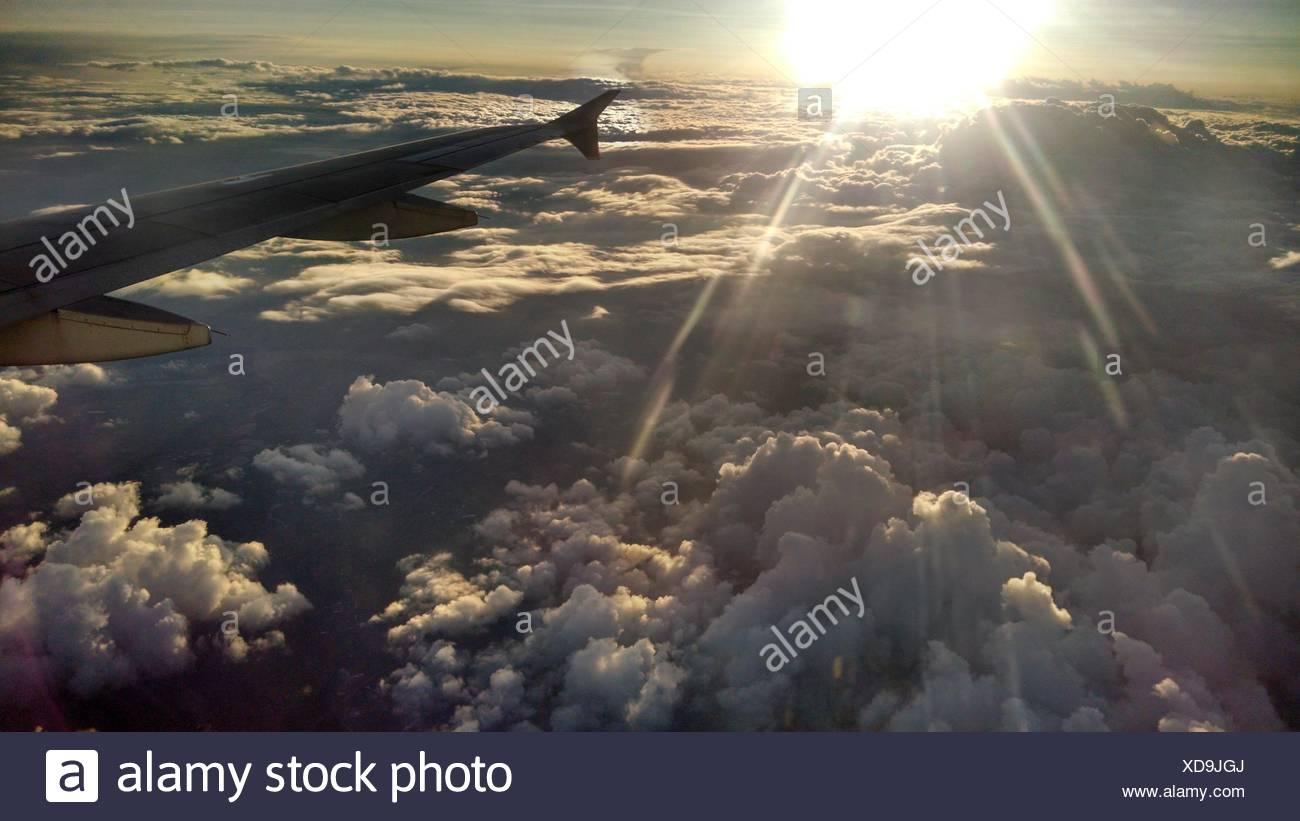 Airplane wing at sunrise - Stock Image