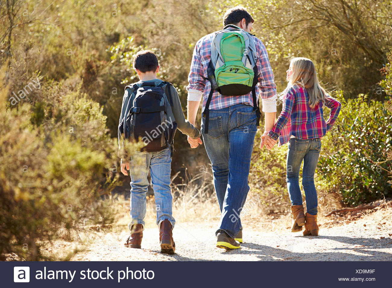 Rear View Of Father And Children Hiking In Countryside - Stock Image