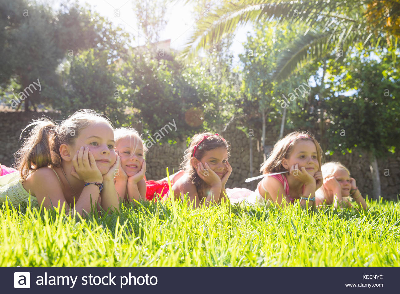 Five girls lying in a row in garden with chins on hands - Stock Image