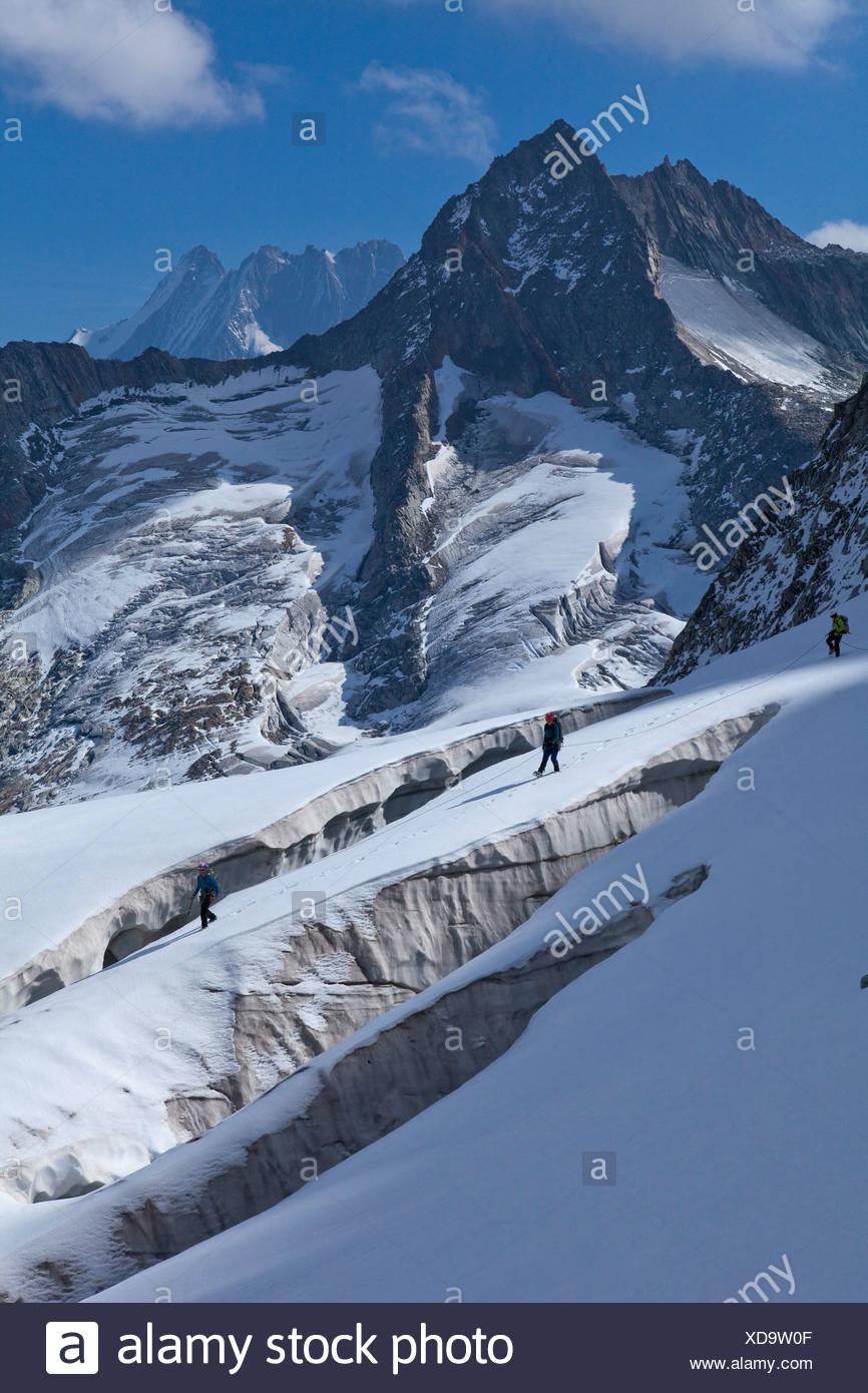 Traveling group, pit glacier, Hienderstock, Lauteraarhorn, Schreckhorn, Urbachtal, mountain, mountains, canton, Bern, Gauli, Gau - Stock Image