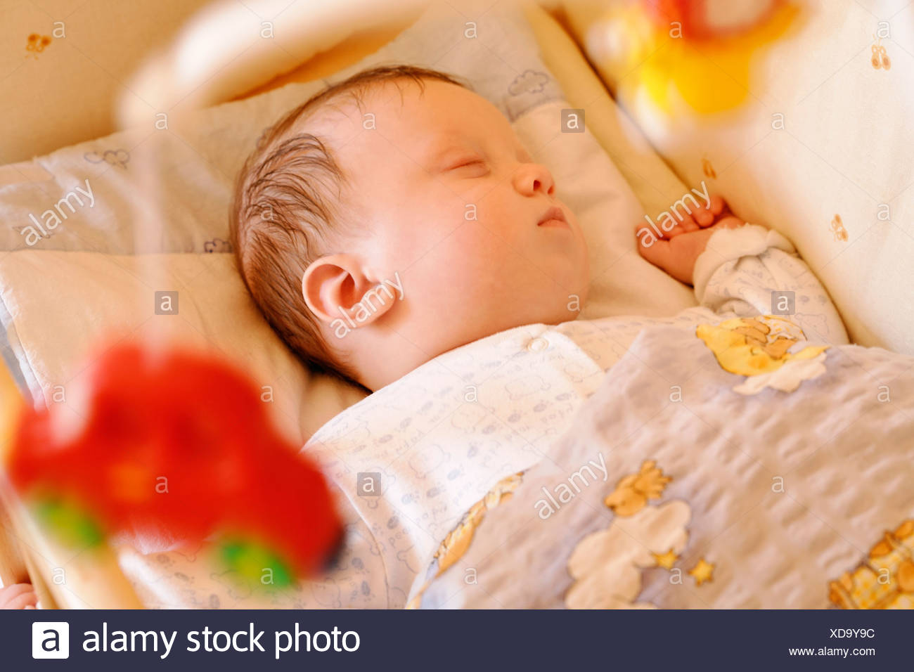 Picture of: 0 To 6 Months 0 6 Months Babies Baby Bed Beds Boy Boys Child Children Close Up Close Up Closed Eyes Close Stock Photo Alamy