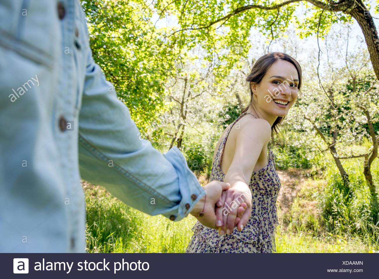 Young woman leading young man through forest, holding hand - Stock Image