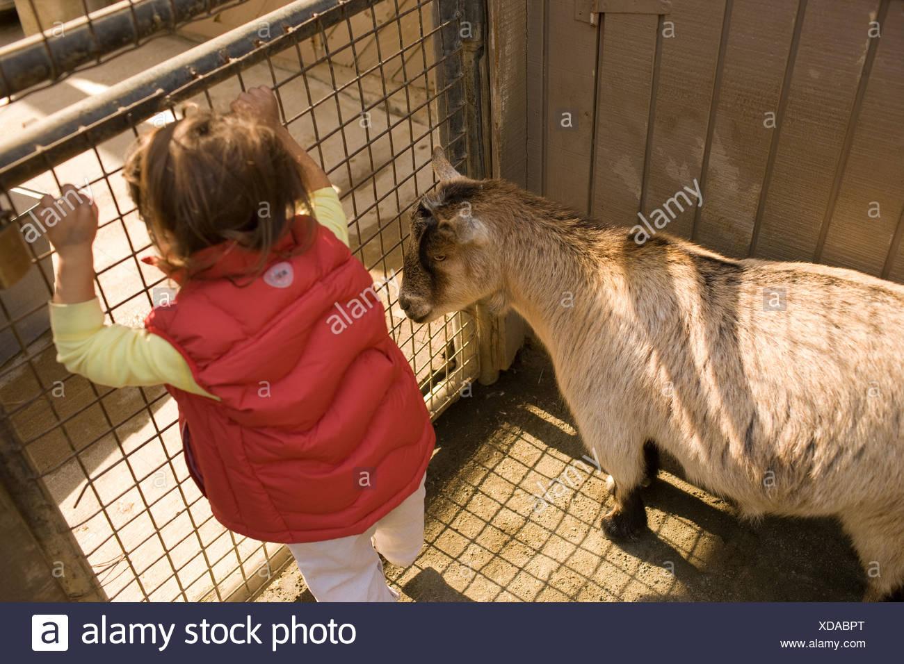erstes petting