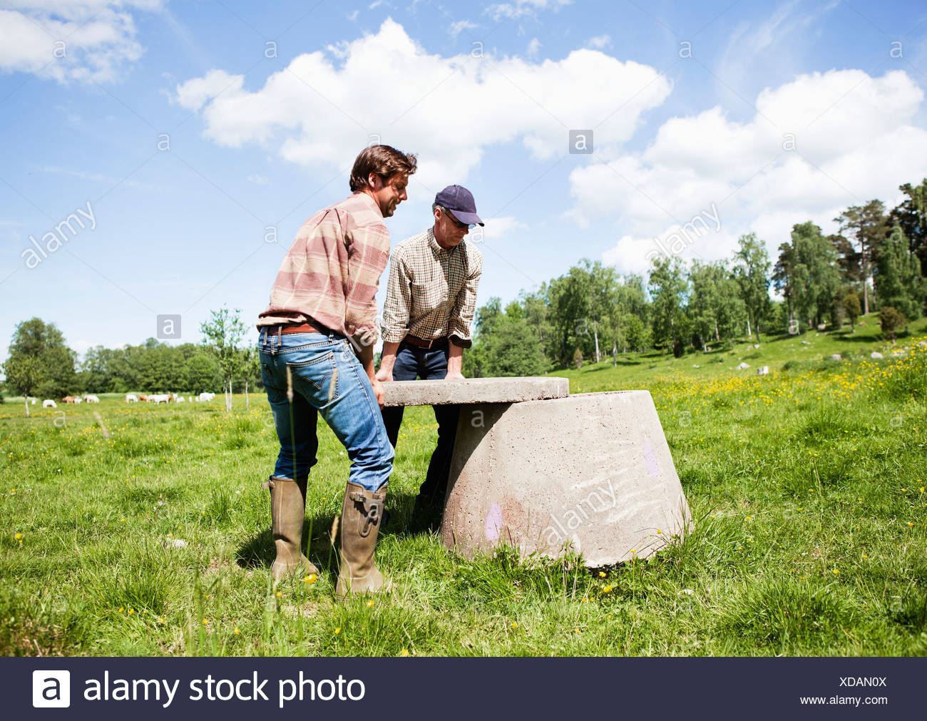 Two men lifting well cover - Stock Image