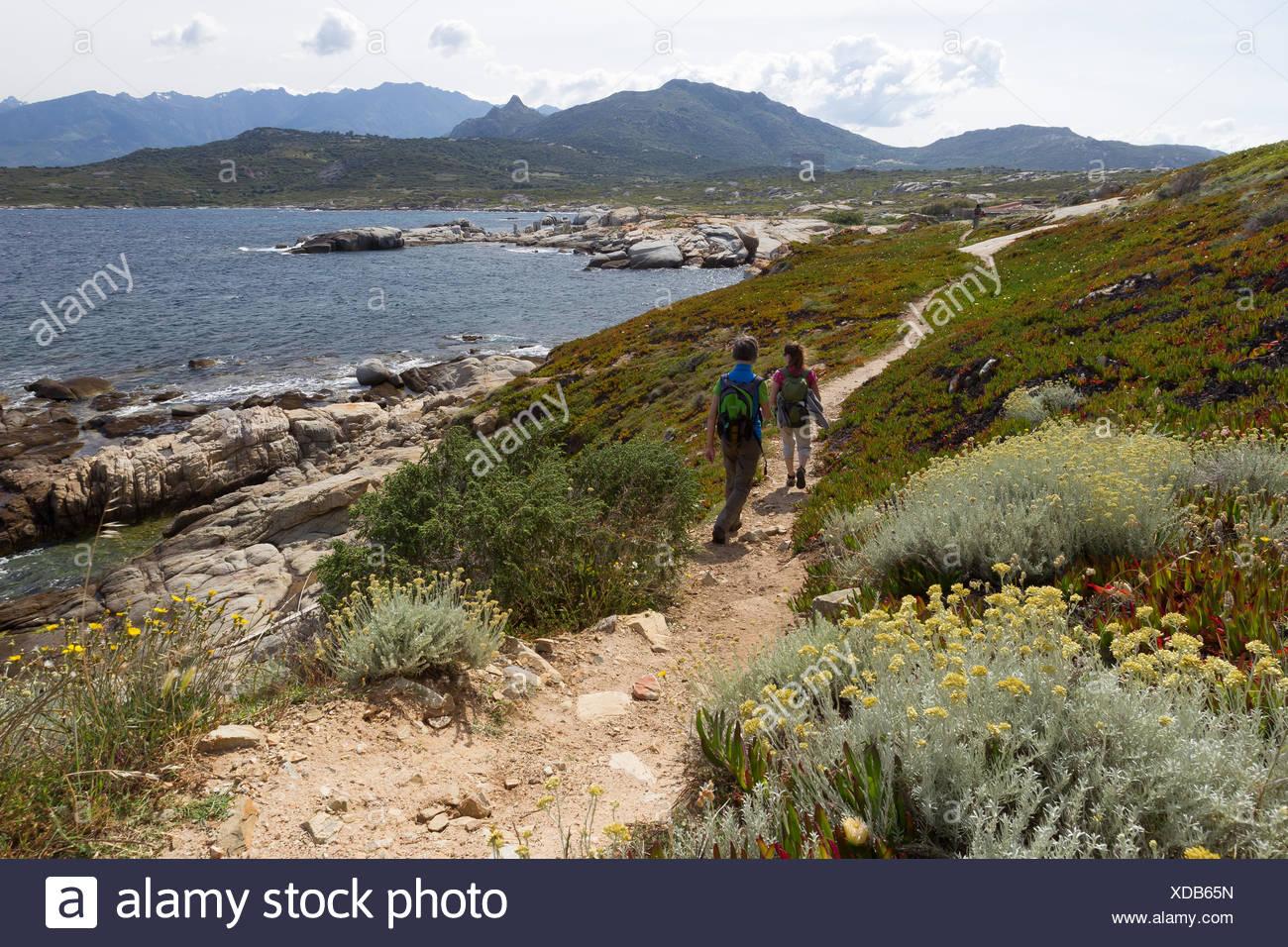 coastal hiking in corsica - Stock Image